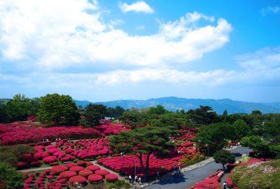 観光には伊東市伊豆高原の大室山以外に小室山などもどうですか
